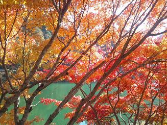丹沢湖畔のボート乗り場4blog.JPG