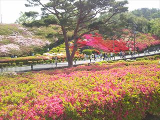 komuroyama_R.JPG